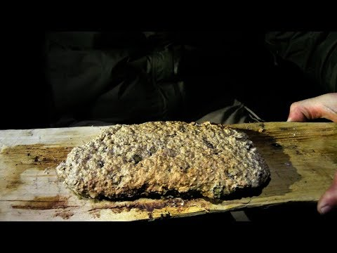 How To: Making Pine Bannock in the Woods