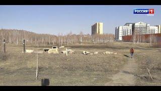 Омичи пытаются спасти парк 300-летия Омска