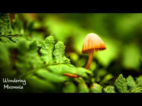 Wondering - Liquid Drum & Bass Mix 2013 HD