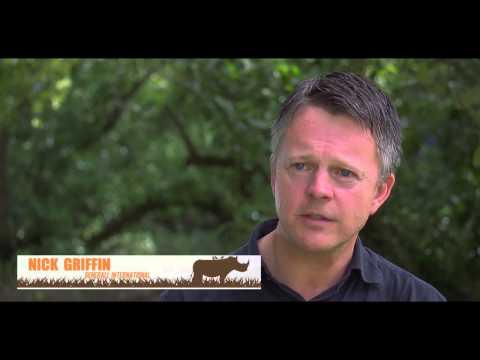 Austen Morris Associates partner Nick Griffin for Alquity