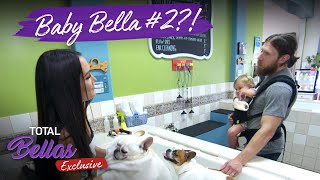 Brie and Daniel Bryan discuss having another baby! | Total Bellas Exclusive