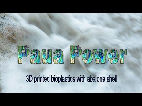 Scion Paua Power