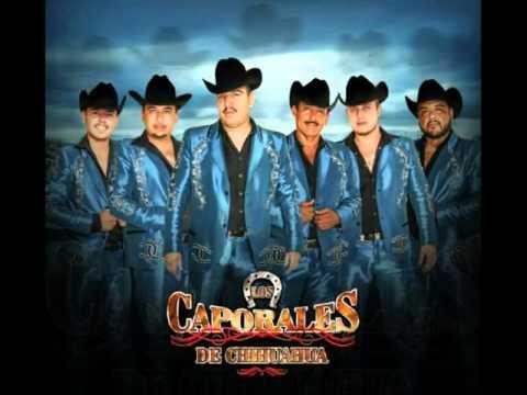 Ando Buscando Una Morena- Los Caporales De Chihuahua