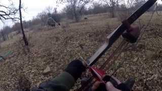 Recurve Boar Kill Go Pro