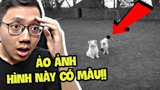 ẢO ẢNH KHÔNG MÀU NHÌN RA CÓ MÀU!!! (Sơn Đù Vlog Reaction)