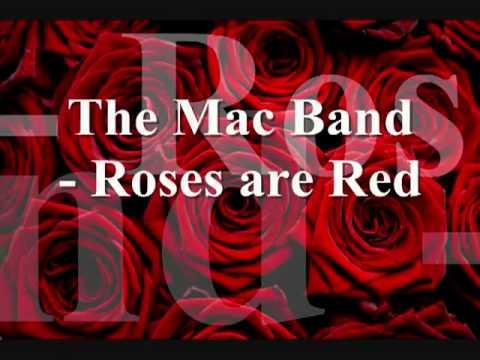 mac band roses are red rar