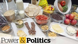 Scheer slams 'ideologically driven' Canada Food Guide   Power & Politics
