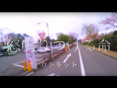 カトキット「怒鳴りつける命」MV