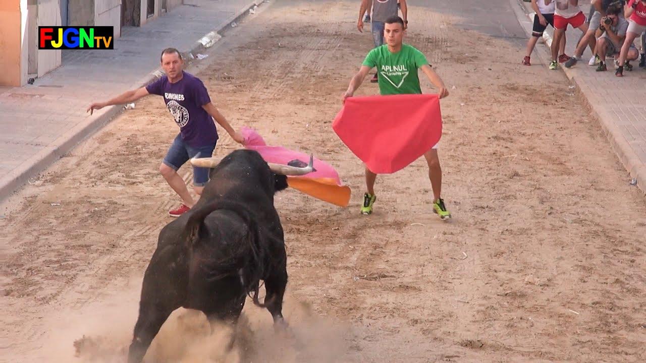 Toros fiestas Sant Joan 2019 - Nules (Castellon) Bous Al Carrer