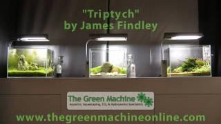 All About Aquascaping Aquascapes By The Green Machine Aquarium Encyclopedia Pet Ency