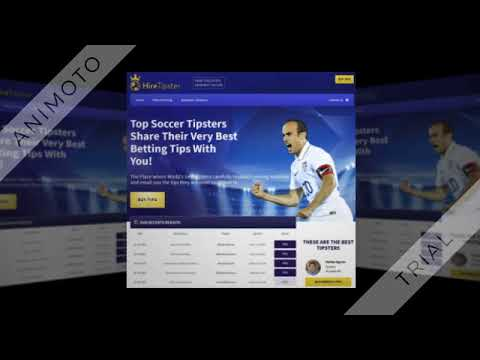 Top Soccer Tipsters Share Their Very Best Betting Tips With You!