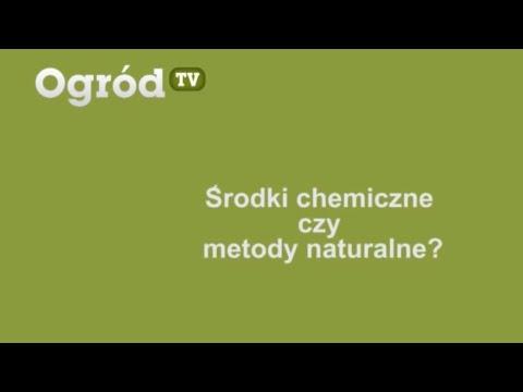Środki chemiczne czy metody naturalne?