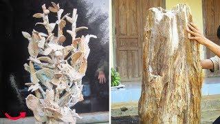 """Những hóa thạch """"triệu đô"""" của người Việt!"""