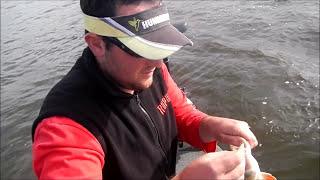 Peche du sandre et de la perche en lac de barrage en HD
