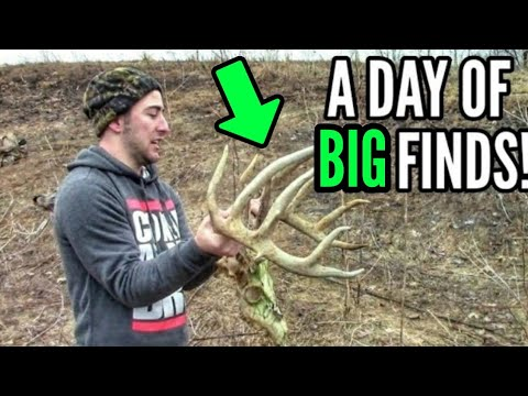 Shed hunting april 13th 2014 quebec canada our biggest finds to