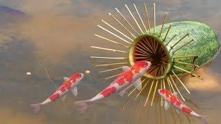 Amazing Fishing Catch Catfish by Watermelon Fruit Fish Trap