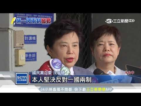 王義川爆海峽論壇挺「一國兩制」 沈智慧提告│三立新聞台