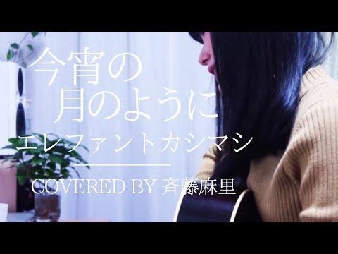 今宵の月のように/エレファントカシマシ covered by斉藤麻里【ギター弾き語り】