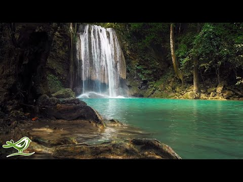 Relaxing Sleep Music: Background Music, Fall Asleep Fast, Spa Music ★141