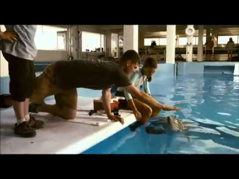 Dolphin Tale - Official Trailer [HD] 3D conversion