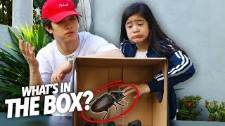 What's Inside The Box Challenge!! | Ranz and Niana