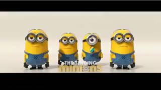 Cool minions singing