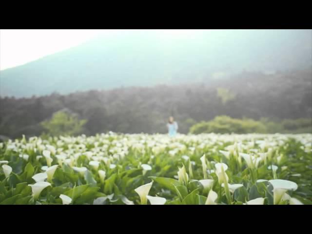 Belsimpel-productvideo voor de Huawei P8 Lite Dual Sim