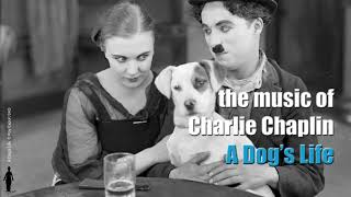Charlie Chaplin - D. Minor Theme