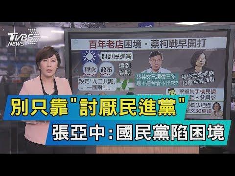 【說政治】別只靠「討厭民進黨」 張亞中:國民黨陷困境