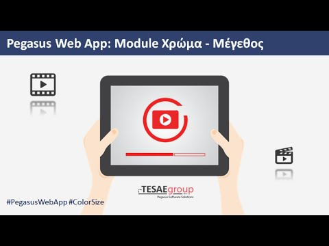 Pegasus Web App - Module Χρώμα - Μέγεθος