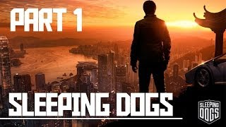 Sleeping Dogs: Part 1, Undercover [Story]