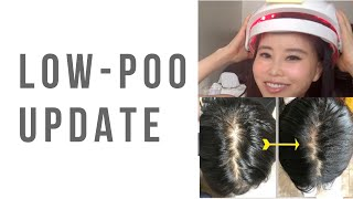 No-poo/Low-poo update | After a year of doing it, the hair growth stopped...