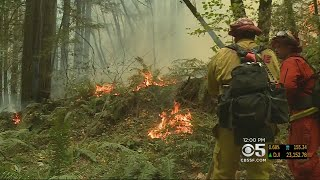 Fire Crews Continue To Battle Bear Fire; Looter Arrested