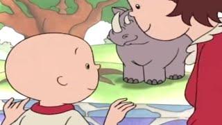 Caillou en Français - Caillou et L'aventure au Zoo   dessin animé en francais   conte pour enfant
