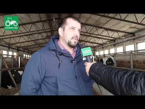 Ferma më e madhe për prodhimin e qumështit në Kosovë - Prizren (Pjesa e trete)