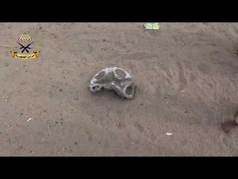 استشهاد مزارع بلغم حوثي وإصابة ثلاثة آخرين جنوب الحديدة