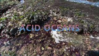Science Bulletins: Acid Oceans