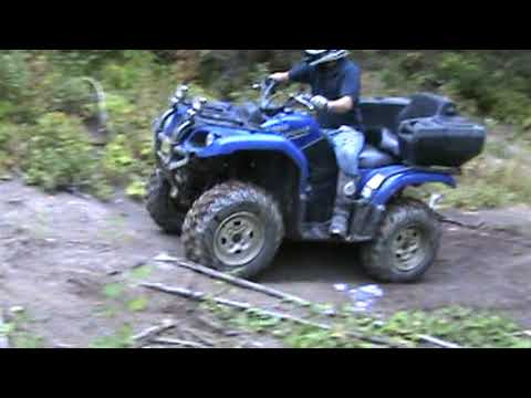- Grizzly climbing a long steep hill-2.mpg