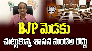 Council abolition turns politically risky for BJP: Prof K ..