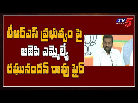 Raghunandan Rao comments on TRS government- CM KCR