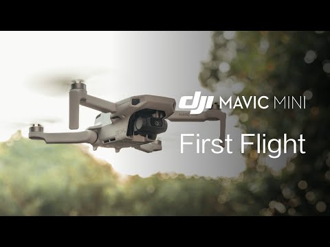 video Mavic Mini