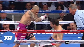 Cotto vs Martinez | Great Upsets in Boxing Free Fight