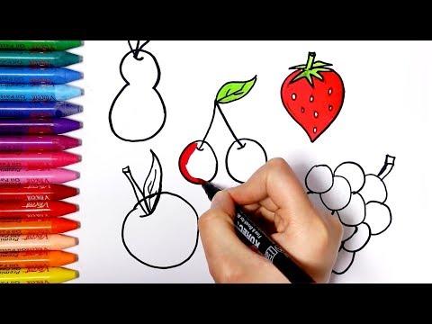 Cara Menggambar Buah Jambu Dan Pir Videomoviles Com