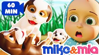 Find My Puppies | Baby Lost His Puppies | Puppies Bath Song