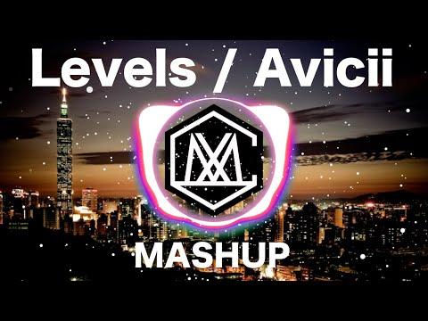Levels / Avicii ( iamSHUM Mashup )