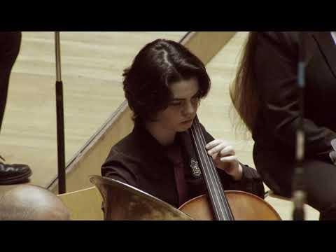 Ricardo Caballer AGRUPACIÓN MUSICAL CARRERA FUENTE DE SAN LUIS DE VALENCIA