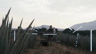 Sounds-Kassie, Part 4, Sounds of Valley Sessions: Worldwide AGAVE Spirits DJ Videos
