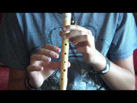 Titanic para flauta dulce con notas