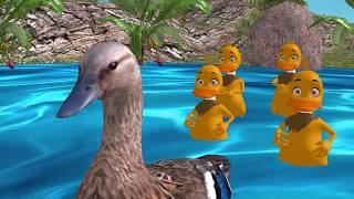 5 little ducks - YouTube
