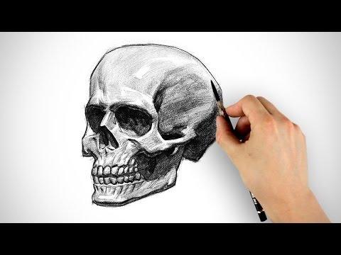 Baixar Draw a Skull - Halloween Special